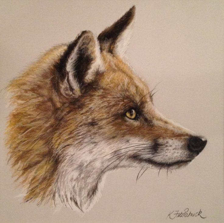 Red Fox Drawing   Red Fox II, Wildlife Art, Kirstie Fitzpatrick, SAA Professional ...