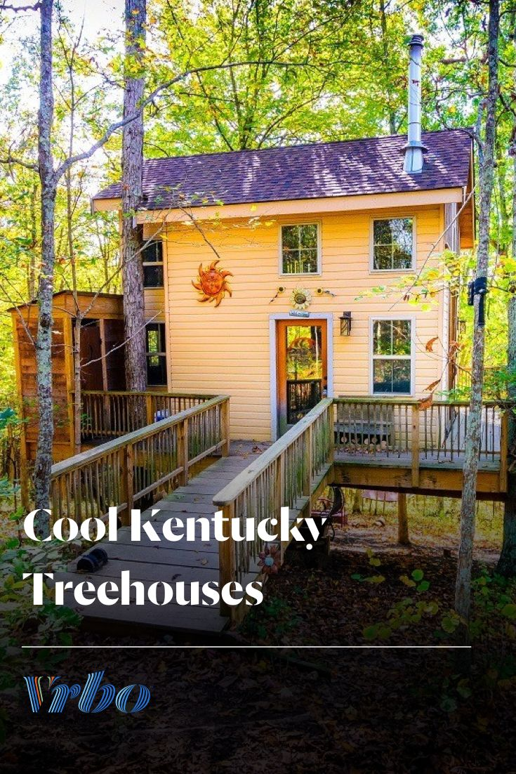 Discover amazing with treetop rentals in kentucky and