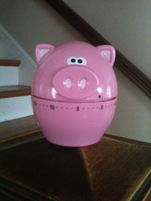 Oink Oink! Ding Ding! Cute pig timer. He   caters to my love of kitchen timers AND pigs. Score!