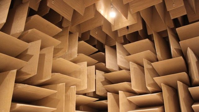 The beautiful Anechoic Chamber at Microsoft...were all sound ends