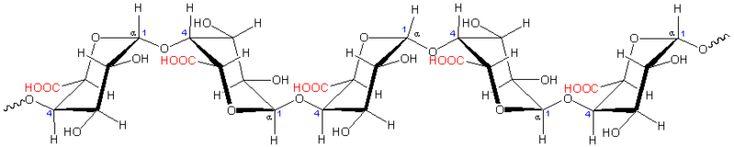 molecule de pectine - acide polygalacturonique