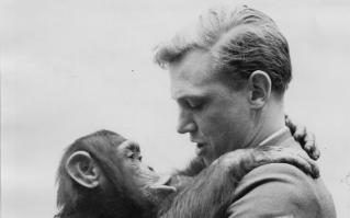 Sir David Attenborough with Jane the chimpanzee in Sierra Leone. Happy 90th Birthday