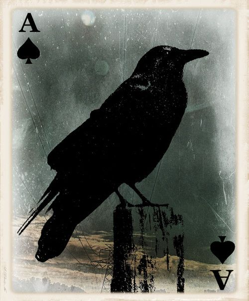 YES!!! Raven as the Ace of Spades.....!!! by angelinfreefall