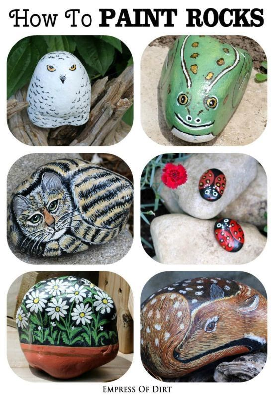How To Paint Rocks for Your Garden