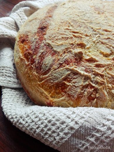 This sourdough homemade bread has a strong flavor and intense aroma. Slightly sweet with the addition of apples with the thin but crispy crust.
