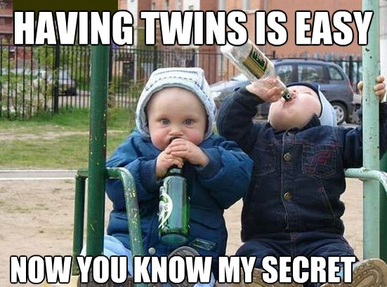 917c06a2e4d6011564082cb702bbc1e7 so funny funny shit 58 best joy of mothering twins!! images on pinterest twin quotes,Birthday Meme For Twins