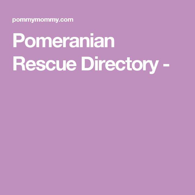 Pomeranian Rescue Directory -