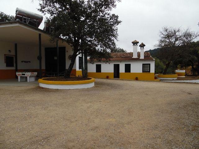 Mil Anuncios Com Oferta De última Hora En El Bosque Casas Rurales Casas Rurales