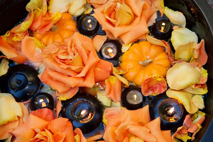 Mistery of halloween and roses