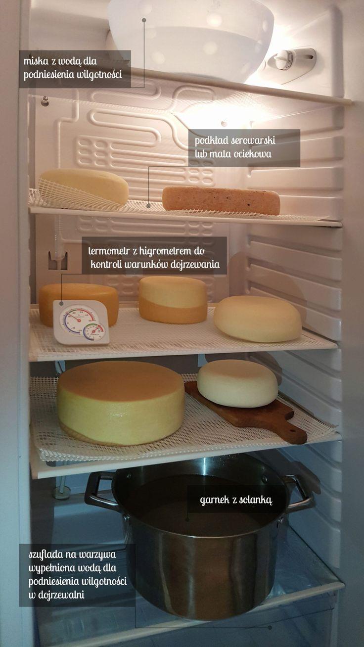 Lodówka jako domowa dojrzewalnia serów