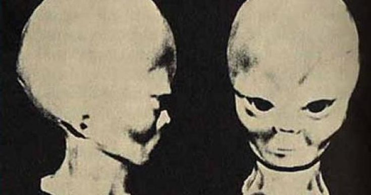 Len Kasten is the author of Secret Journey to Planet Serpo, a tellall book based on factual events. On the 16th of July, 1965, a massive alien spacecraft from the Zeta Reticuli star system landed