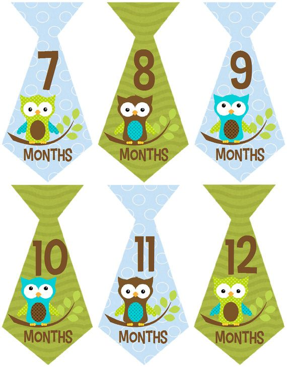 Monthly Baby Boy Stickers Milestone Stickers Baby by MaddiesMomE