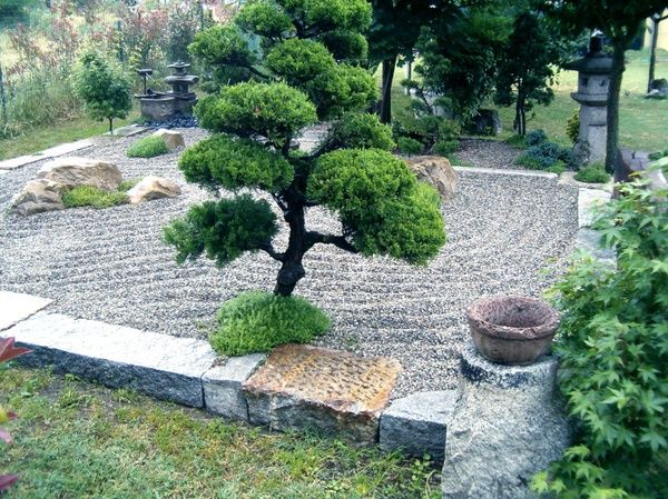 Best 25+ Japanese Rock Garden Ideas On Pinterest | Japanese