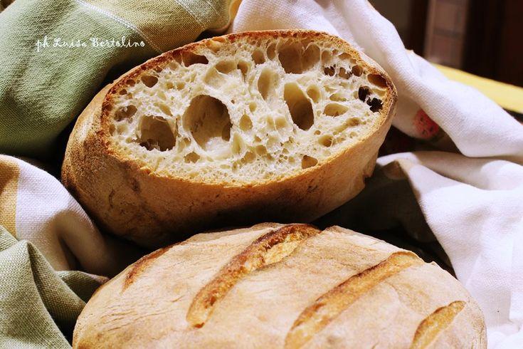 Pagnotta con farina di grano tenero tipo 2