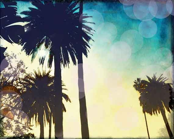 Palm Tree Photo, California Photography, Vintage Style, Sunset, Venice Beach, Bokeh, Under 25. $22.00, via Etsy.