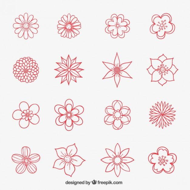 Coleção Flores desenhadas mão