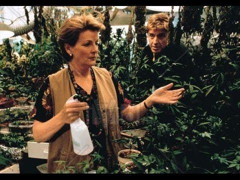 El Jardin De La Alegria Comedia. Peliculas Completas en español