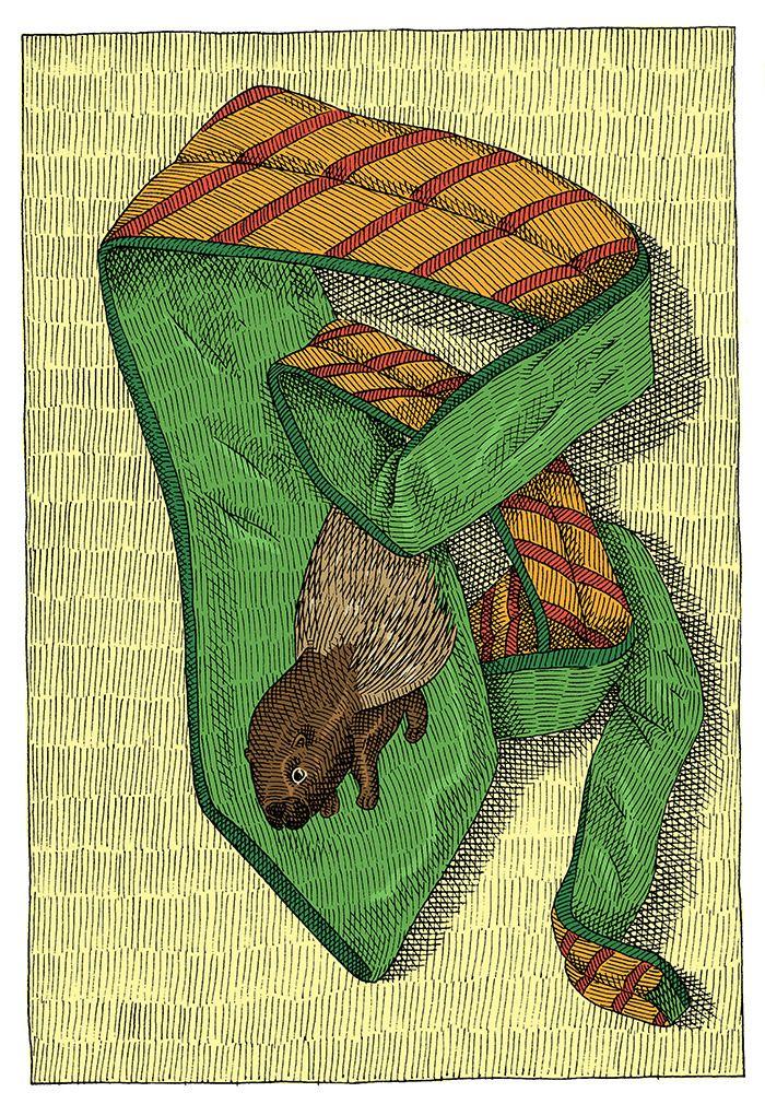 ilustrație de Mircea Pop