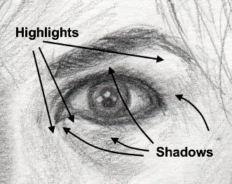 5. Highlights in the middle - there are usually one or more bright highlights in the center of the eye. 6. Small space between the eyeball and the lashes..there's a thin strip of skin between the lashes and the eye.7. Highlights and shadows surrounding the eye - These will change depending on the light so you'll have to use your powers of observation and adjust accordingly.