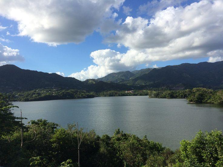 Lago Guayabal, Villalba PR