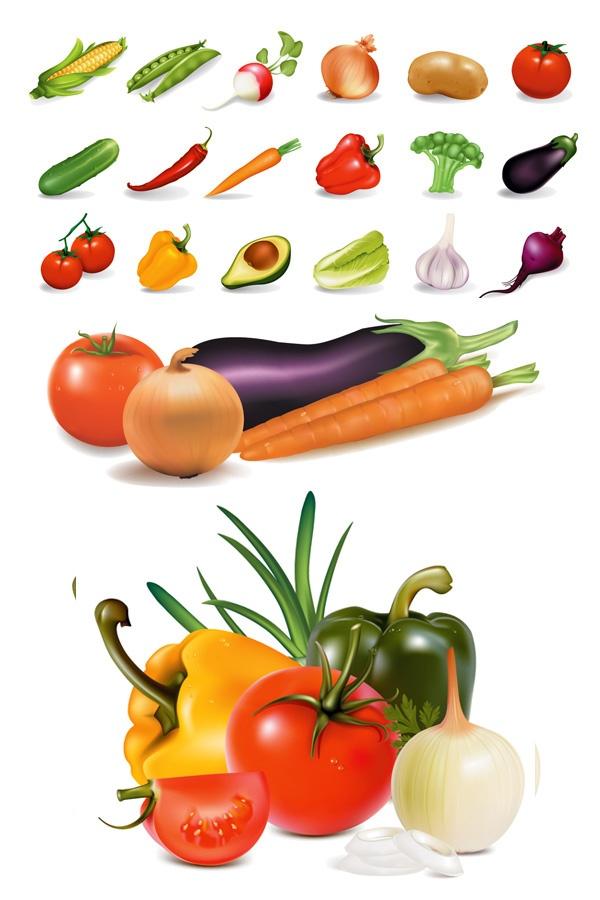 Fresh Vegetables Clip Art | Cabbage | Vector Gallery