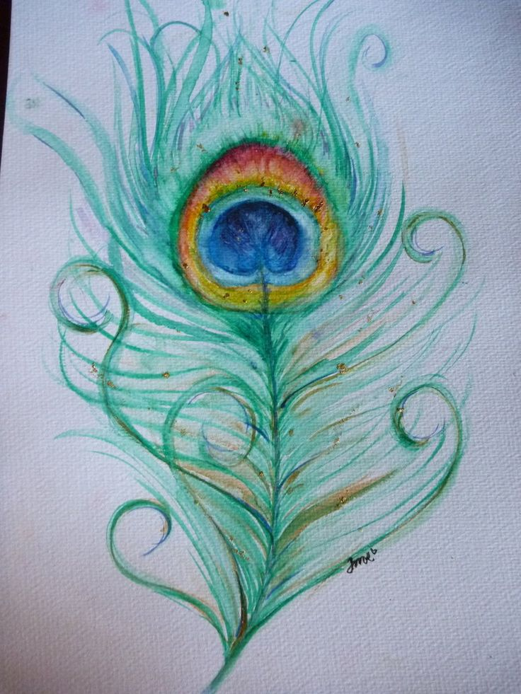 Pen Art Peacock Feather Cached Jul Cachedfind Bass Fishing ...