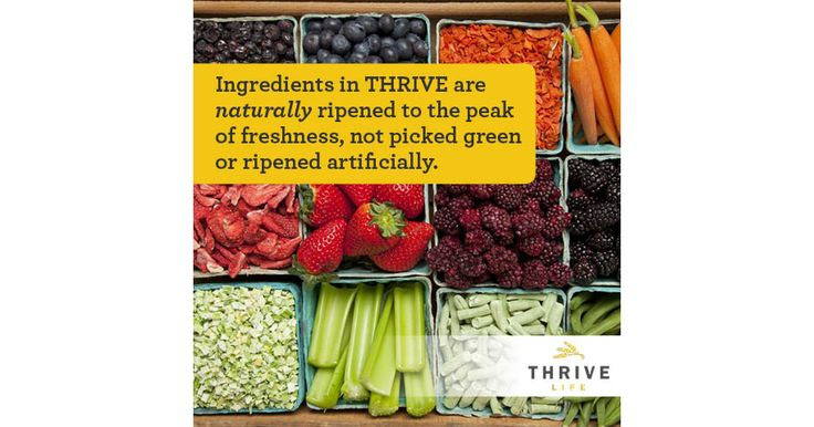 Best Foods For Long Term Storage 7 Best Thrivelife Images On Pinterest  Freeze Drying Food Network