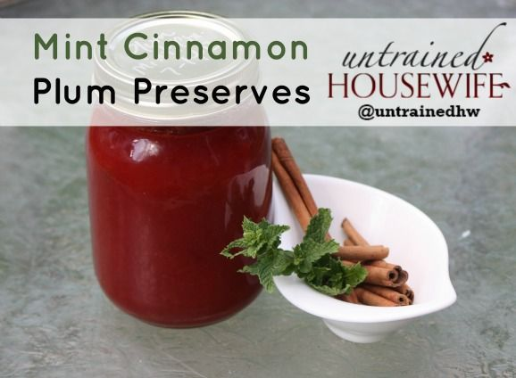 Mint Cinnamon Plum Preserves Canning Recipe Will have to get plums from @Adrienne Hiebert for this one! lol