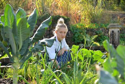 Organic vegetable garden... spotted - Our Chef