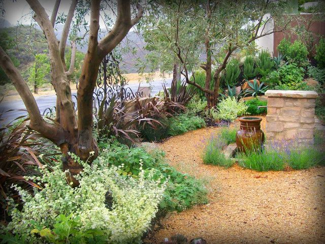 Low Water Garden Design low water garden design fabulous photoslinks with low water landscaping lavender and agave are featured in Low Water Mediterranean Landscape