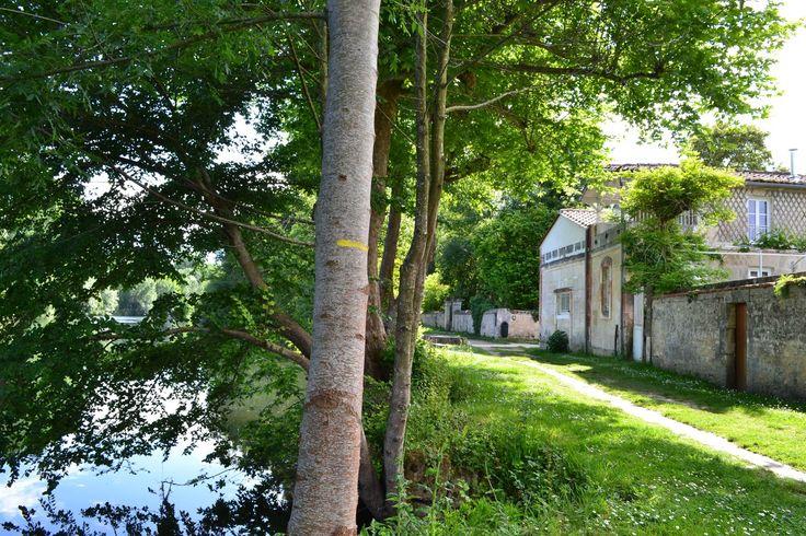 Gîte d'étape en bordure de Charente, à Jarnac