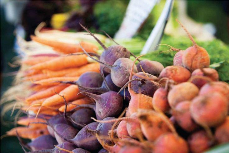 Fresh farmed and foraged seasonal food | Rabbit