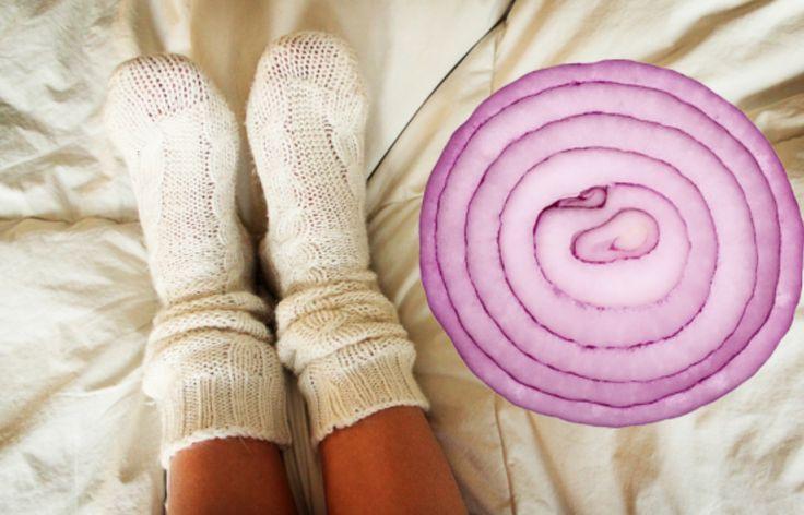 Meisterleitung der Natur.Über Nacht Zwiebel in Socke. Bei hartnäckigen Erkältungen u. Nebenhöhlenentzündungen,etc