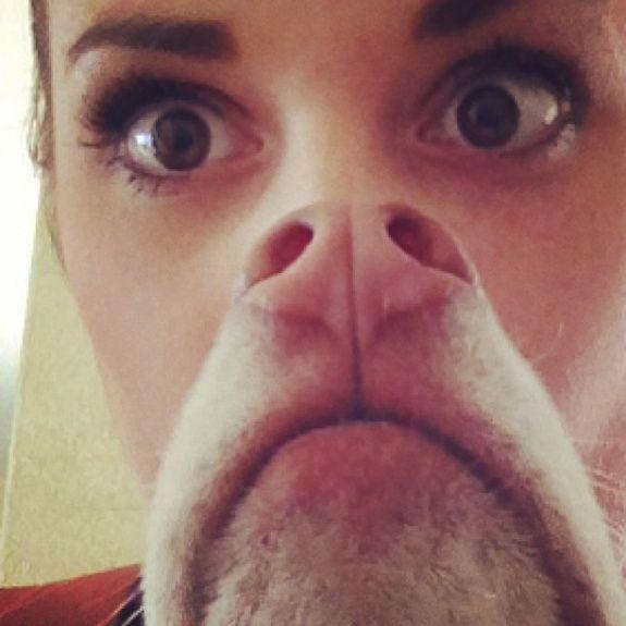 Awesome Dog Beards!!