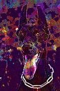 "New artwork for sale! - "" Doberman Dog Portrait Language  by PixBreak Art "" - http://ift.tt/2hAYmXx"