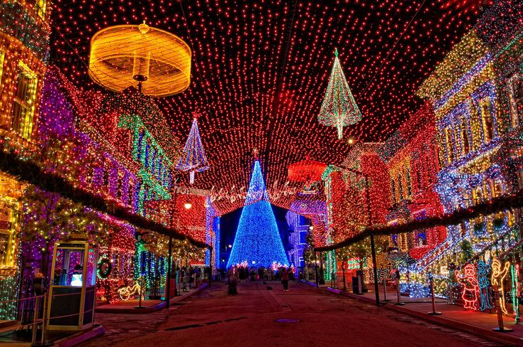 Osborne Family Spectacle of Lights at Disney's Hollywood Studios in Walt Disney World
