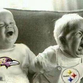 Ravens !!