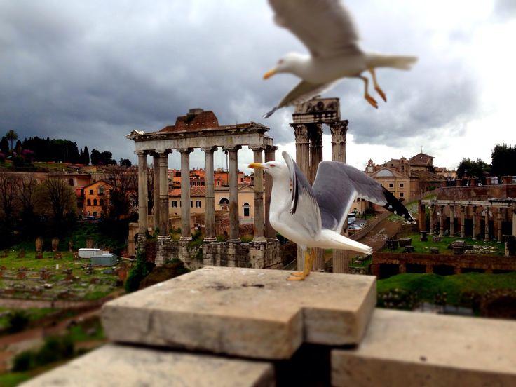 #roma #italia #citybreak #travel