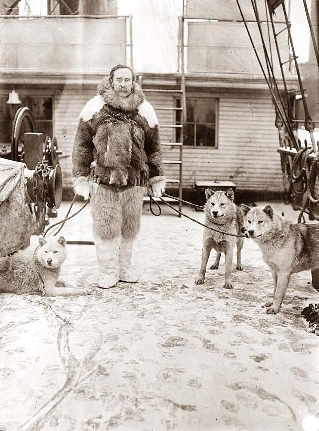"Admiral Robert Peary with dogs on deck of ""Roosevelt"" during his Artic Expedition in search of the North Pole. Admiral Peary is generally credited as being the first person to reach the North Pole. This Photograph was made in 1907."