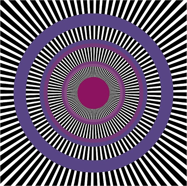 31 Best Op Art Images On Pinterest Op Art Optical