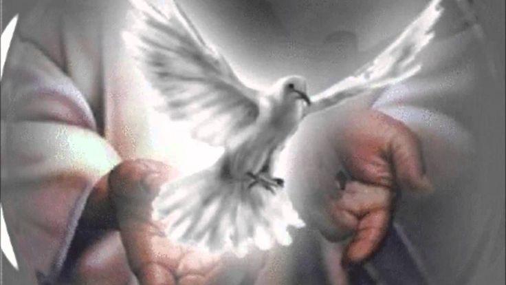 Espíritu Santo, Dios de infinita caridad, dame Tu Santo Amor; Espíritu Santo de piedad y dulce caridad lléname de tu sabiduría, de tu fuerza y entendimiento; Espíritu santo fuente de luces Celestiales, mándame tu Luz desde los Cielos, ilumina mis actos y palabras, purifica mi alma y cuerpo y dame tu paz. Espíritu Santo tercera persona de la Santísima Trinidad, Amor del Padre y del Hijo, perdona mis continuas infidelidades hacia vosotros, yo ……. te adoro humildemente, te alabo y bendigo yen…