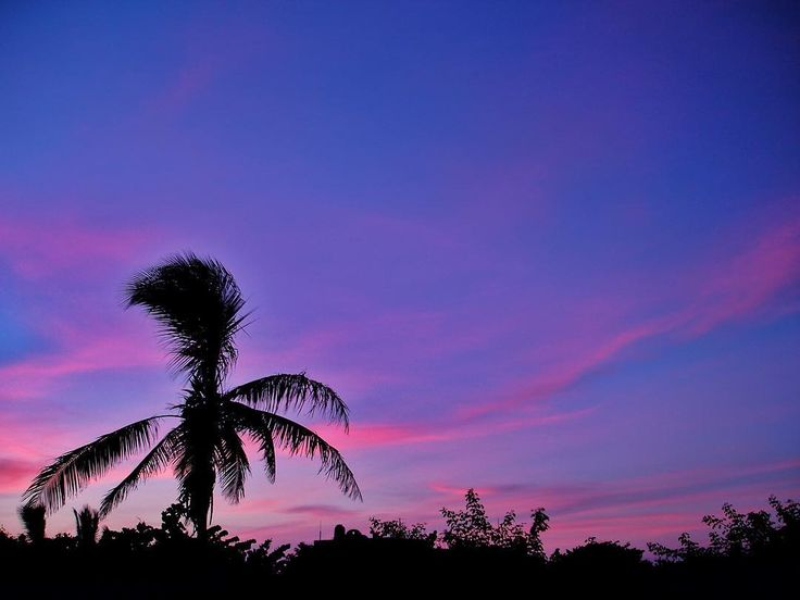 An afternoon in Chelem Yucatán. #naturelovers #natureshots #natureporn #naturephotography #landscape #landscapes #landscape_lovers #landscapephotography #nature #chelem #yucatan #travel #pink #blue #mothernature #bestoftheday #instagood #instadaily #beautiful #trees #hdr #hdrlovers #beach #sky #clouds #sunset #afternoon