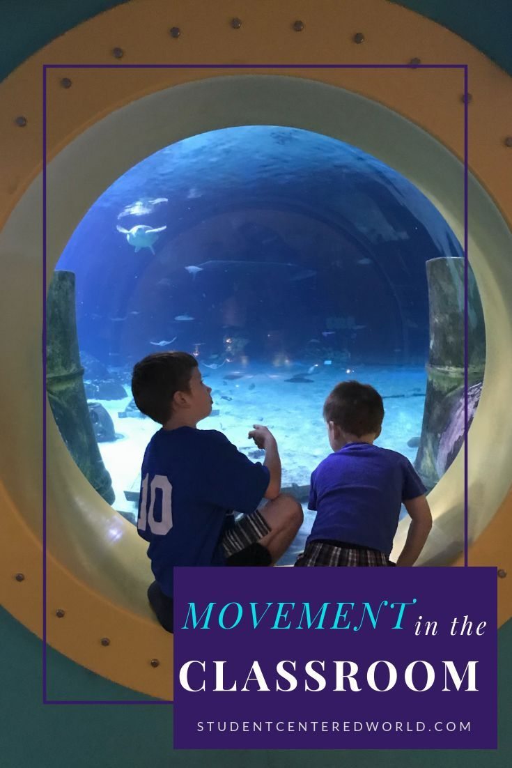 Movement in the Classroom Dr Martha Eddy CMA RSMT Rationales Guidelines and Resources To Get Schools Moving WHY MOVE 1 Our bodies are designed to move