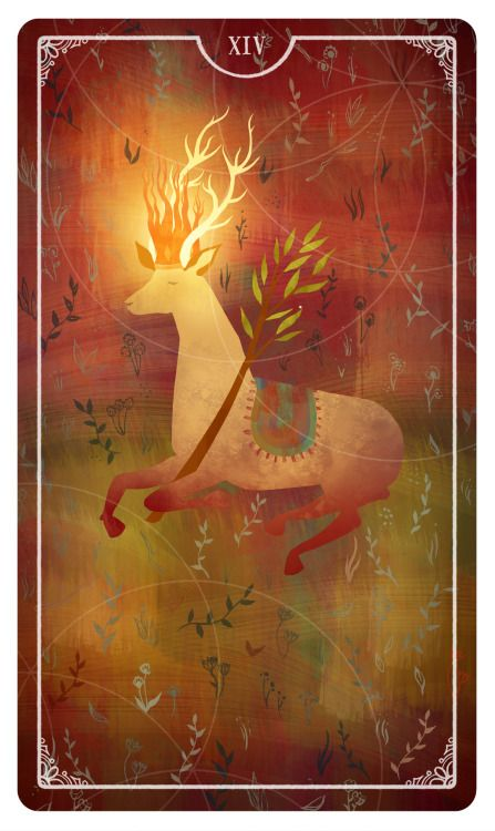 KIng of Wands - Julia Iredale