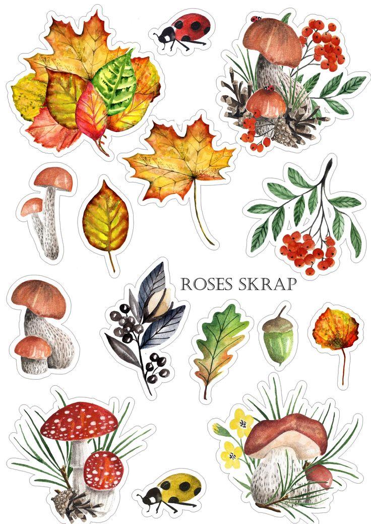 Осенние картинки для скрапбукинга