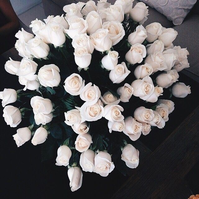 White roses have always been my favorite flower because they go with everything.
