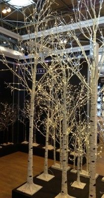 Event Prop Hire: LED White Birch Tree - 10ft (Warm White Lights)