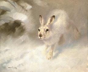National Wildlife Galleries: Alan Hunt Wildlife Art