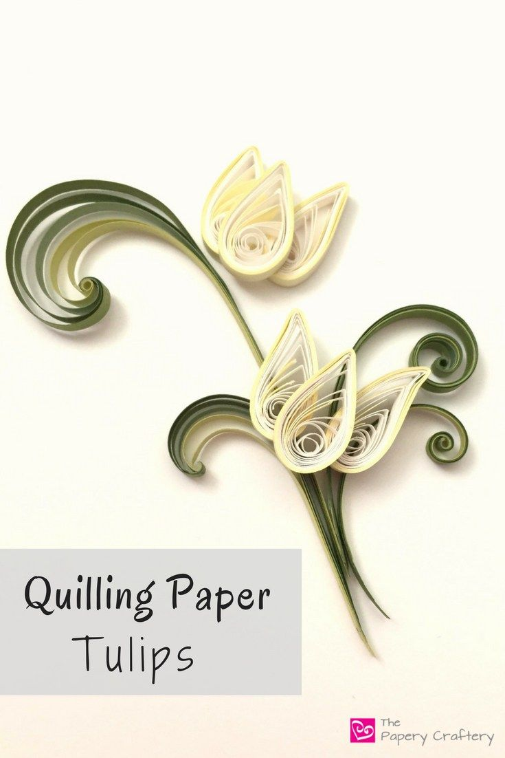 Quilling Paper Tulips ~ The perfect spring craft for quilling beginners!    www.thepaperycraftery.com