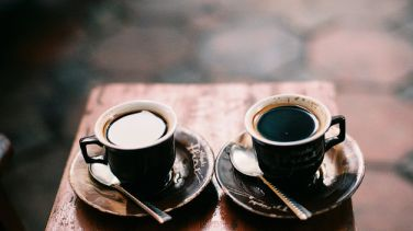 Kahve Tutkudur...